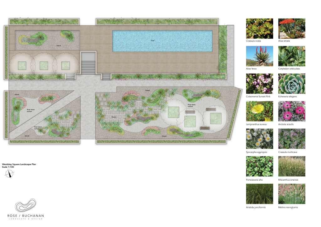 RBLD118_Wembley Square Landscape Plan Render Rose Buchanan Landscape design