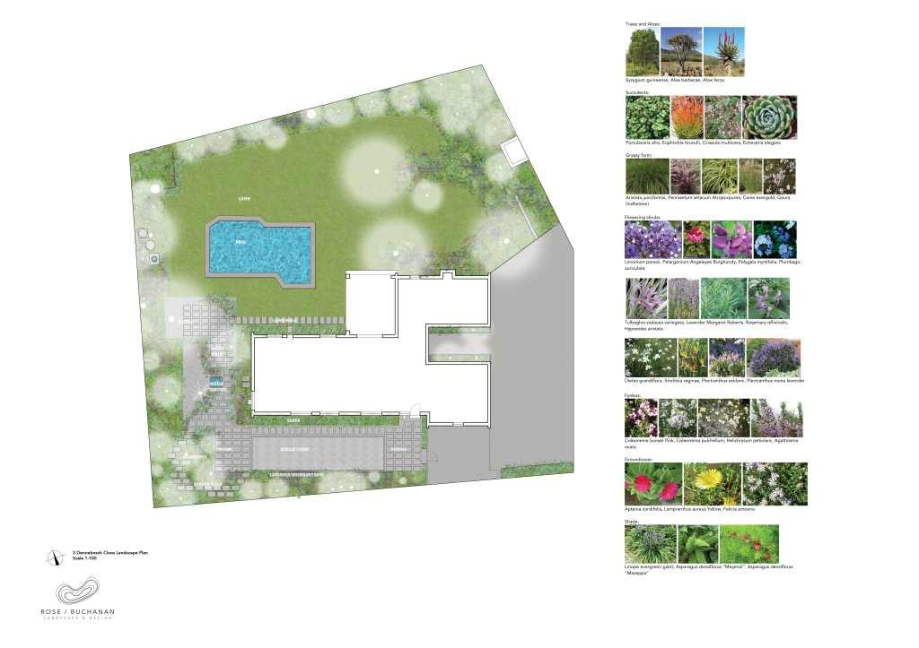 RBLD93_3 Dennebosch Close Landscape Render Rose Buchanan Landscape design