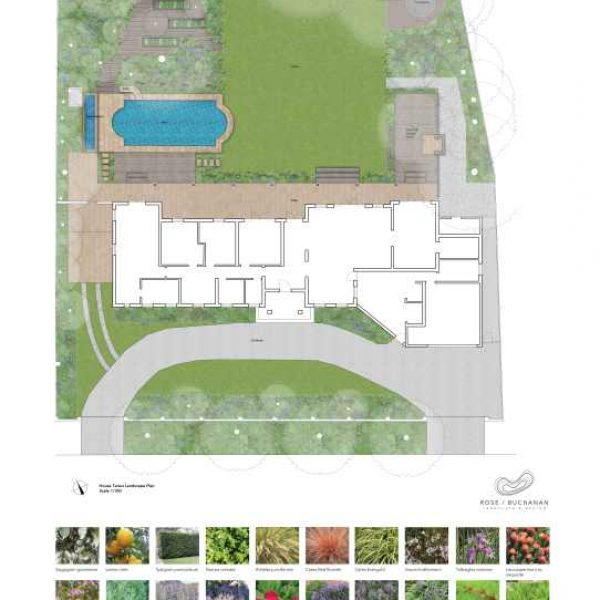 RBLD101_House Teresi Landscape Plan Render Rose Buchanan Landscape design